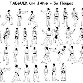Tae kwon do - 5ο poomsae