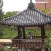Κορέα 2011